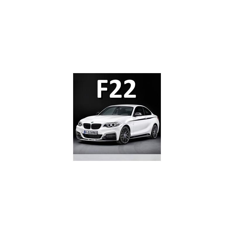 DataDisplay F22